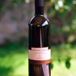 Cococciola Azienda vin