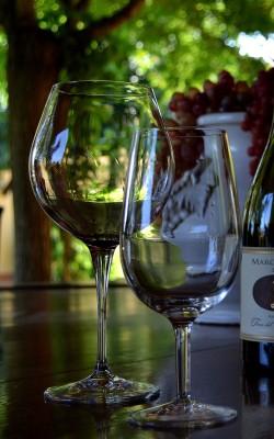 Vine fra Veneto